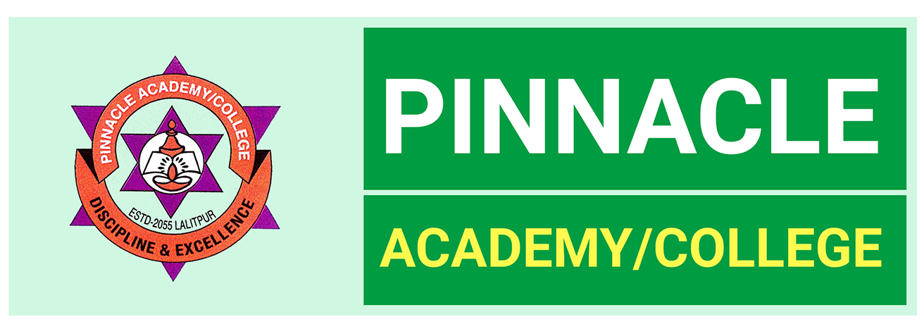 Pinnacle Academy